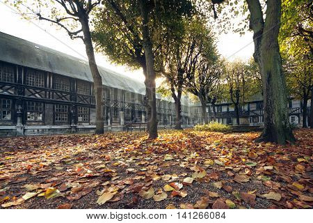 yellow leaves in romantic autumn park; beautiful golden fall in Rouen France; yard of old french town;