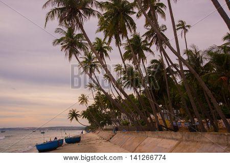 Vietnam, Mui Ne, Asia, Palm Trees On The Background Of A Beautiful Sunset