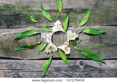 White Flowers With Green Petals On Aold Wooden Floor