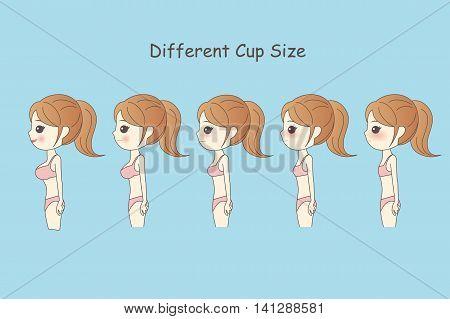 cartooon woman wear underwear has different cup size