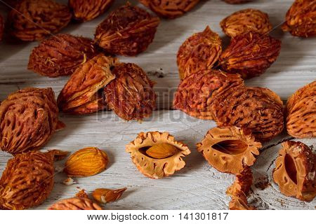 beautiful fruit peach and lots of peach pits from peaches on wooden background