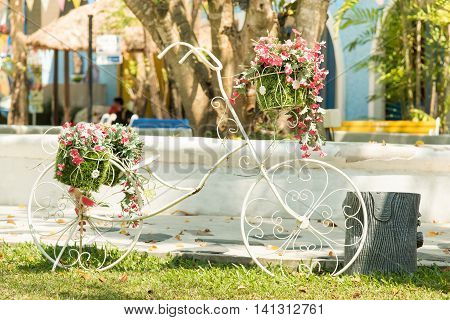 White bicycles in the park have a red flowers in the basket.