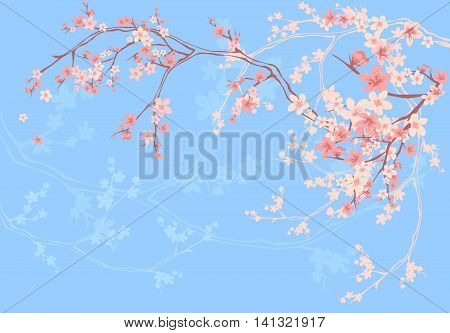 blooming sakura branches on blue - spring season floral vector background