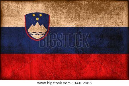 flag of slovene