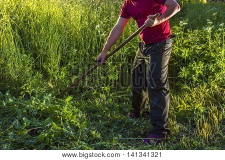 man mows the grass using a scythe in a field lit by the sun