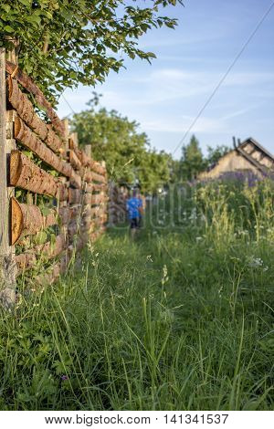 Boy goes on a footpath an overgrown high grass along wooden fence at sundown