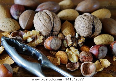Various nuts ready to be cracked by a steel nutcracker
