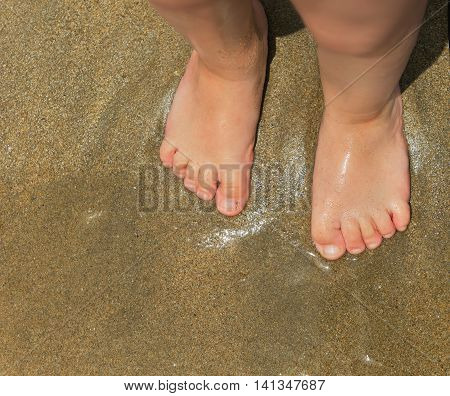 Standing feets foot little child baby on wet sea sand golden
