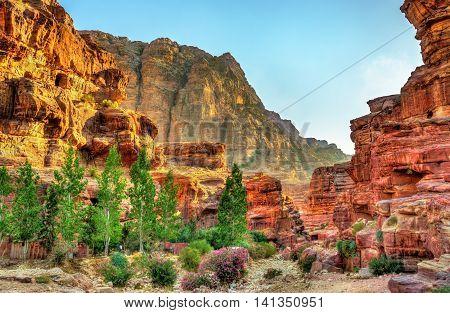 Wadi Jeihoon, the path to the Monastery El Deir in Petra - Jordan