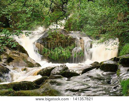 Dolgoch Falls - Upper waterfall of the Nant Dol-goch stream near Dolgoch Station on the Tal-y-Llyn miniature railway from Tywyn Wales UK.