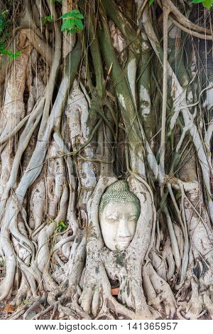 Head Of Sandstone Buddha In The Tree Roots. Wat Phra Mahathat, Ayutthaya, Thailand