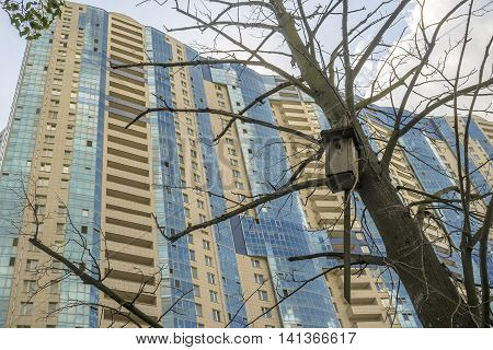 Old birdhouse hanging on dry tree on a background of a modern tower building
