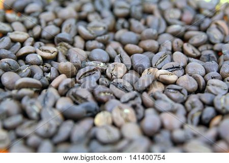 Coffee beans. Different types of coffee beans.