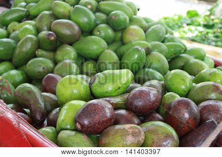Fresh avocados in Vietnam, green and purple avocado