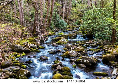 Forest creek. Water cascades over moss covered rocks in Great Smoky Mountains National Park Tennessee USA
