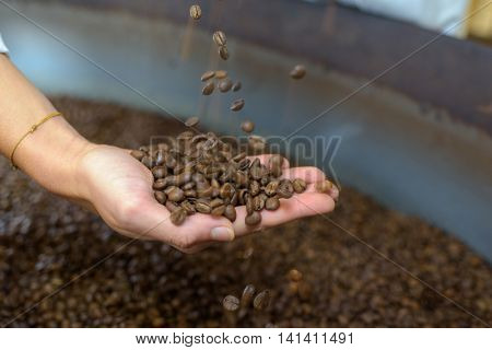 Coffee beans held in a hand