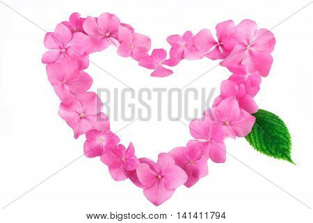 Pink flowers in a heart shape on white. Natural pattern background with copy space