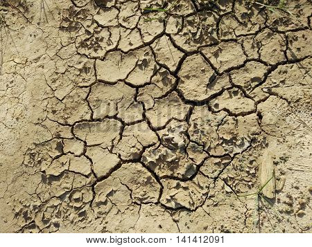 Cracked ground because of a lack of water