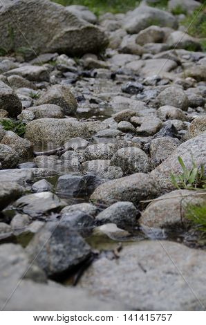 Rocks in a riverbed in the rocky mountains