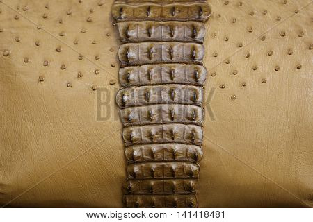 detail of a handbag made of crocodile and ostrich leather.
