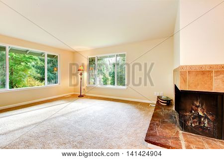Nice Airy Family Room With Carpet Floor And Fireplace.