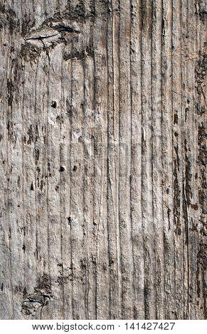 Wood Texture  fabric, black, seamless, organic Background