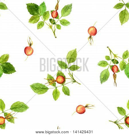 seamless pattern with watercolor branches of briar with green leaves and orange and red berries, hand drawn illustration, painting floral background