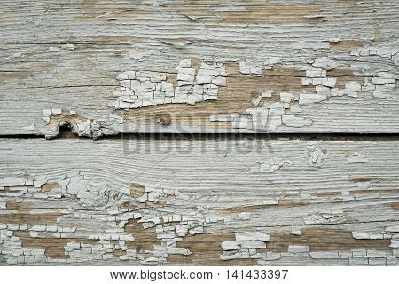 old texture of a peeling of the wooden board painted in the pale gray color for abstract background