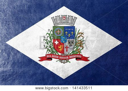Flag Of Joinville, Santa Catarina State, Brazil, Painted On Leather Texture