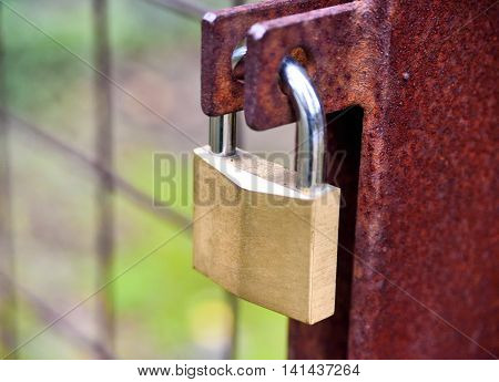 Padlock on a fence. Locked door with golden padlock.