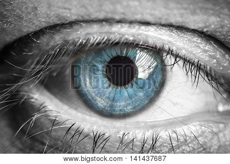 Eye macro. Macro image of human eye