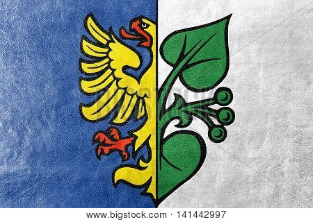 Flag Of Karvina, Czechia, Painted On Leather Texture