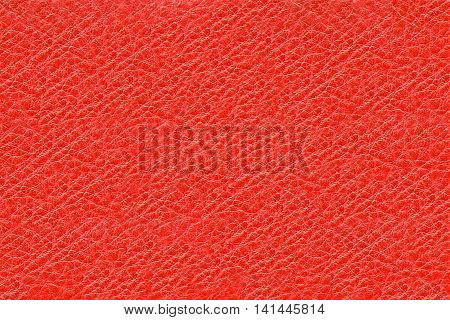 Texture of natural tanned and processed pig skin leather for the manufacture of products. Background skin a dimpled red. Raw materials for industry and leather goods.