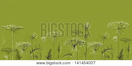 Herbal seamless border with herbs and grass on green summer background. Herbal design for badges, banners, bio products package and eco designs. Vector illustration stock vector.