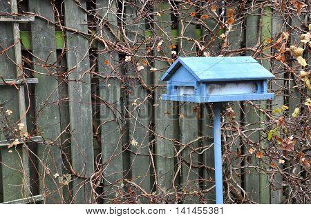 Blue house-shaped bird feeder near wooden fence