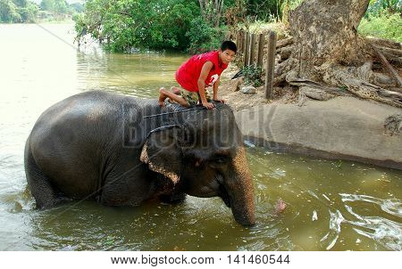 Ayutthaya Thailand - December 22 2010: Young Thai boy riding atop his elephant as it bathes in a river at the Ayutthaya Elephant Royal Palace & Kraal *