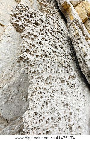 Detail of rock on Portio Beach in Pielagos Cantabria Spain.