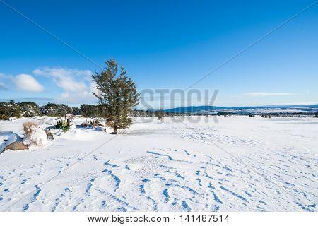 Wind blown drifts from overnight snowfall on Mount Ruapehu golf course landscape