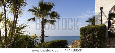 Palm trees in the garden and panoramic view of the Mediterranean sea in Roc de Sant Gaieta Roda de Bera Tarragona Spain.