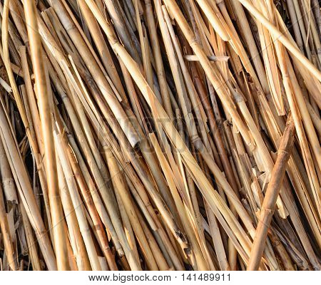 Heap of straw in a horizontal format
