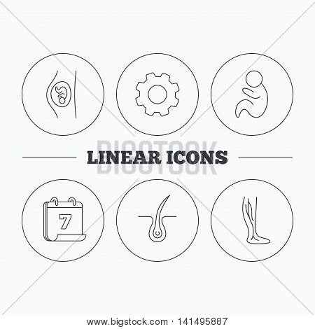 Pregnancy, pediatrics and phlebology icons. Trichology, vein varicose linear signs. Flat cogwheel and calendar symbols. Linear icons in circle buttons. Vector