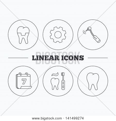 Brushing teeth, tooth and dental crown icons. Drilling tool linear sign. Flat cogwheel and calendar symbols. Linear icons in circle buttons. Vector