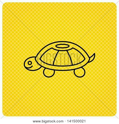 Turtle icon. Tortoise sign. Tortoiseshell symbol. Linear icon on orange background. Vector