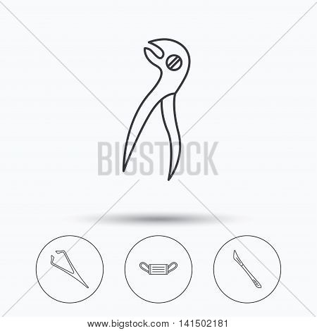 Medical mask, scalpel and dental pliers icons. Eyebrow tweezers linear sign. Linear icons in circle buttons. Flat web symbols. Vector