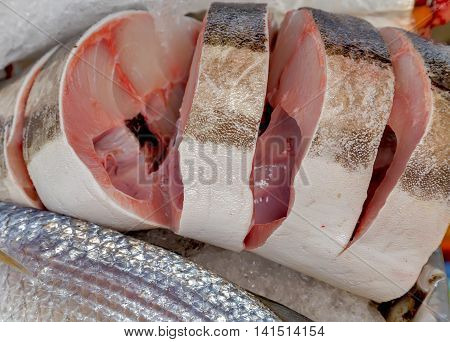 Fish Meat On Ice