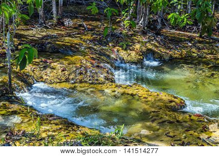 Waterfall Mangrove Forest At Krabi In Thailand