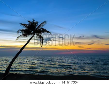 Palm Trees On The Beautiful Sunset Tropical Landscape Sea