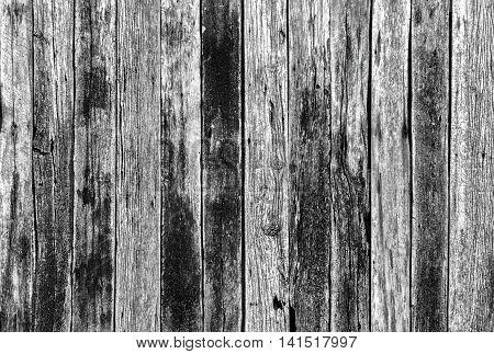 Textur Background Wood Panel