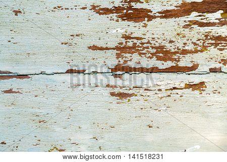 White Textur Background Wood