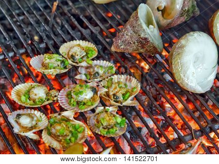 Scallop Seashell Grilled Seafood